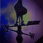 Weather Vane by Deb Gibbons