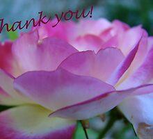 Thank you card by Jan Stead JEMproductions