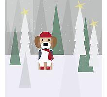 BEAGLE LOVE FOR CHRISTMAS! Photographic Print