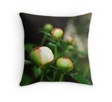 White Peony Buds  Throw Pillow
