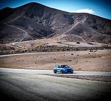 GC8 Willow Springs by Shaynelee