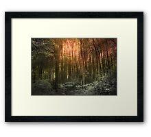 El Paradiso Mio - Awakening Framed Print