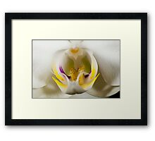 Orchidaceously Close Framed Print