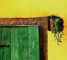Doors by aleksandra15