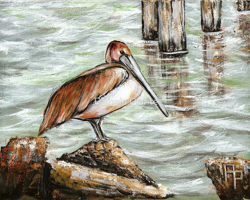 Pelican by Pamela Plante