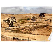Australian Open Country Landscape Poster