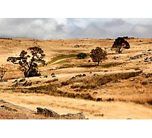 Australian Open Country Landscape Photographic Print