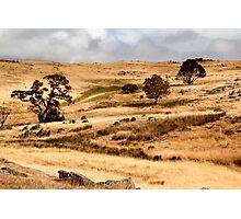 Australian Open Country Landscape Photographic Print