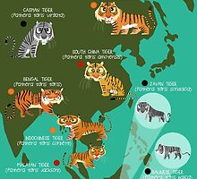 Tigers of the World by rohanchak