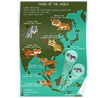 Tigers of the World Poster