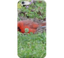 Hunting bird. iPhone Case/Skin