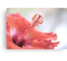 One Fine Morning Canvas Print