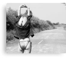 Hitchhiker??003 Metal Print