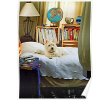 """A Dog named """"Sweetie"""" Poster"""