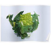 Green Cauliflower  Poster