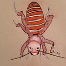 Doodle Bug by Louisa McQ