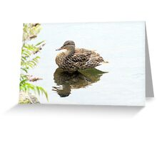 Northern Reflections Greeting Card