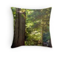 Forest Light Throw Pillow