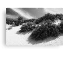 Dune Ecology  Canvas Print