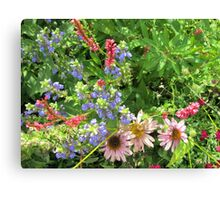 Fun Garden Canvas Print
