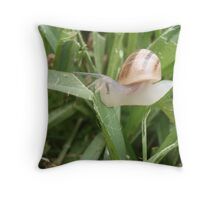 In search of food - Local Garden Snail Throw Pillow