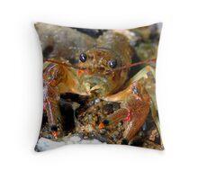Crayfish Throw Pillow