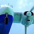 Plane landing by Dirk van Laar