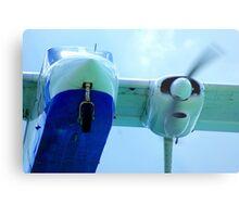 Plane landing Metal Print