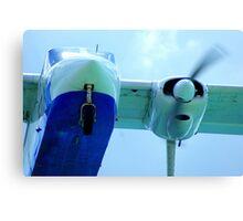 Plane landing Canvas Print