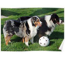 Aussie Soccer Play Offs! Poster