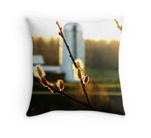 Sunset Pussy Willow Throw Pillow