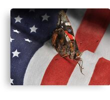 All Amearican Red Admiral Canvas Print