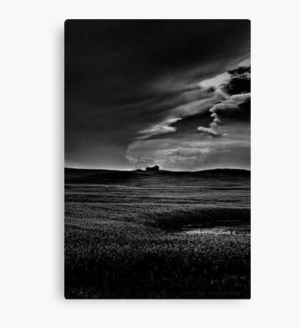 Stormy Daze Canvas Print