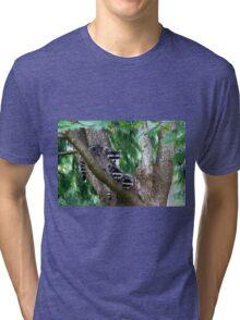 Raccoons Tri-blend T-Shirt