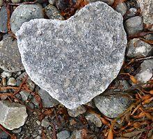 I found my heart in Skjolden.  by seemisstree