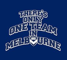 Melbourne Victory FC (South End) by Cotza