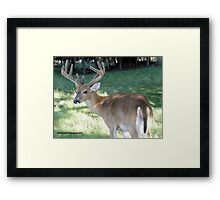 Handsome and Strong Framed Print