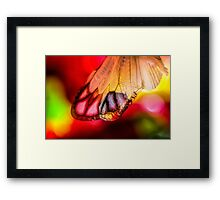 Yearning for Love and Light Framed Print