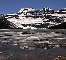 Cameron Lake by Vickie Emms