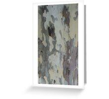 Plain Bark Provence  Greeting Card