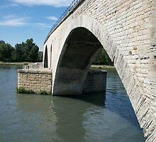 Pont d'Avignon 1 by Pontvert