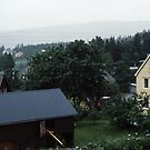 Homes south of Bolna from train Bodo to Trondheim Norway 198406210015  by Fred Mitchell