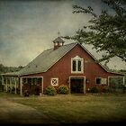The Barn at Rising Hope Farm by Christine Annas