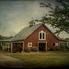 The Barn at Rising Hope Farm by Christine Annas