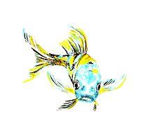 Koi Butterfly Fish Aqua & Yellow Photographic Print