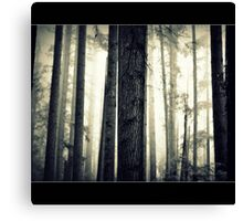 Lady in the forest Canvas Print