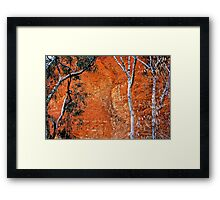 Bungle Trees and Rock Patterns Framed Print
