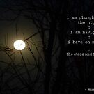 I Am Plunging Into The Night by Maree  Clarkson