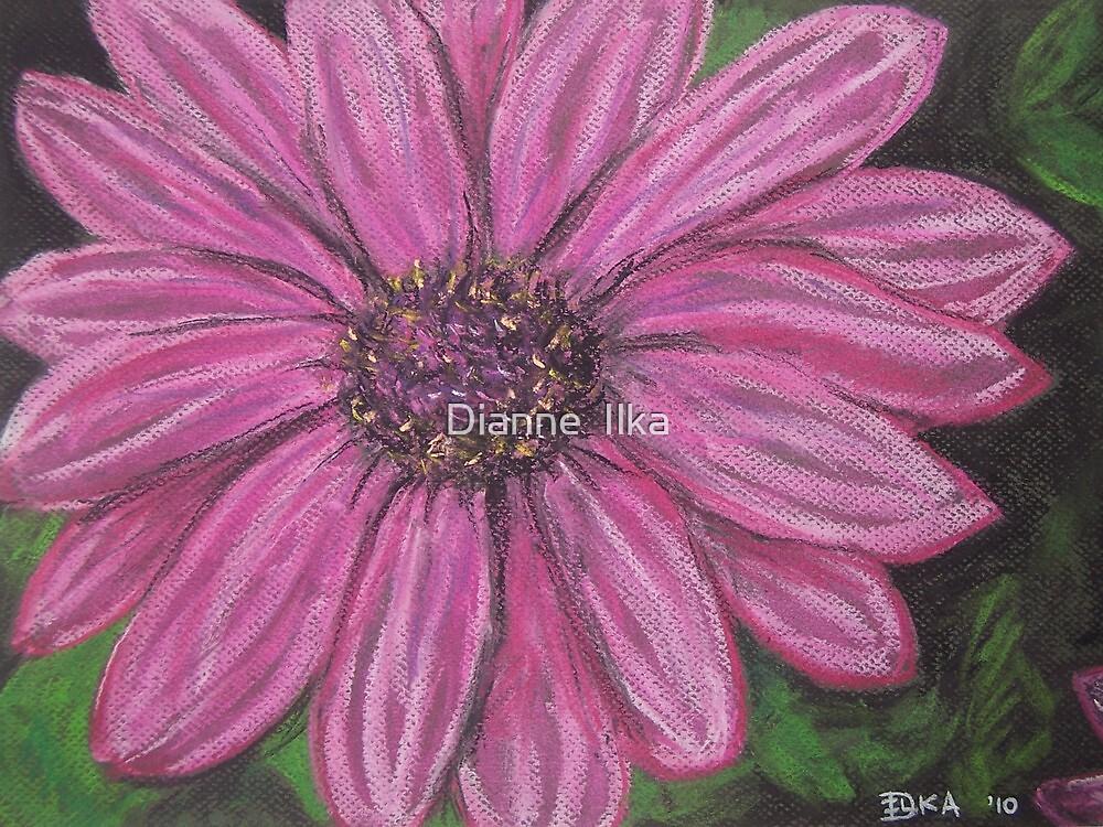 From My Garden by Dianne  Ilka