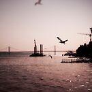 Lisbon by Laurent Hunziker